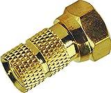 Schwaiger GOFST6502537 F-Stecker (Durchmesser 6,5 mm, 2-er Set) Gold