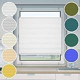 Victoria M. Plissee Klemmfix ohne Bohren EasyFix, Größe: 35 x 100 cm, Farbe: Weiss