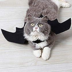 Mosca del traje del animal doméstico moscas, Halloween Gato del gato del gato del gato del traje del disfraz del gato del traje del gato del gato de las mascotas del traje de Halloween (L, negro)