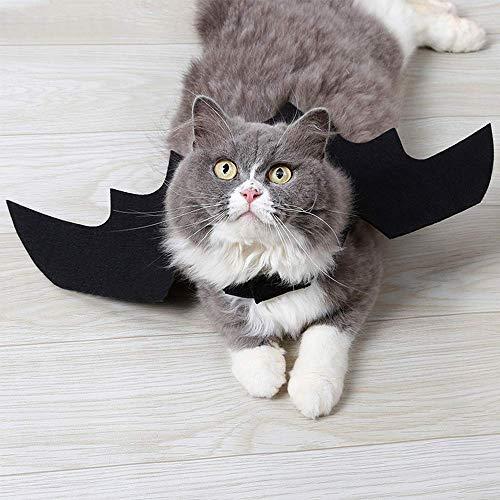 Xinnegen Pet Kostüm Fledermausflügel, Halloween Pet Fledermausflügel Cat Cat Costumes Kleidung Halloween Cat Pets Fledermaus Kostümzubehör (L, ()