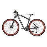 BMW originale, Cruise M Bike, bicicletta antracite opaco/rosso, taglia M
