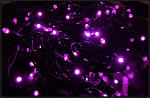 CREATIVE MOTION Batteriebetrieb 100Led Rosa Farbe Lampen 16Füße lang