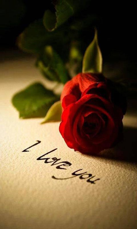 I Love U Wallpaper Amazoncouk Appstore For Android