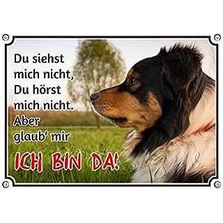 Petsigns Hundeschild Australian Shepherd - uv-beständiges Metallschild bis DIN A3, 1. DIN A5