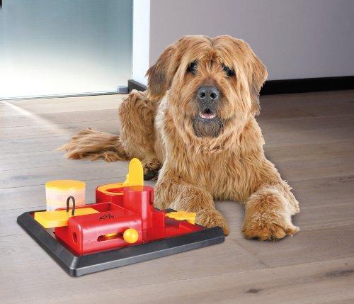 Trixie 32013 Dog Activity Poker Box 2, 31 x 10 x 31 cm, farblich sortiert - 2