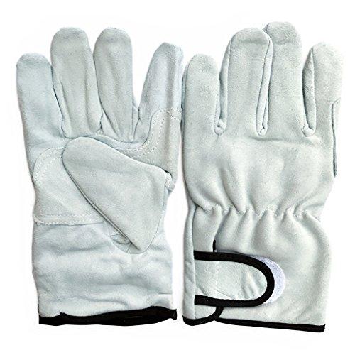 Preisvergleich Produktbild Kurzer Abschnitt Schnalle Grillhandschuhe Schutzhandschuhe Fahrer Schweißen Schweißer Handschuhe Grau Blau