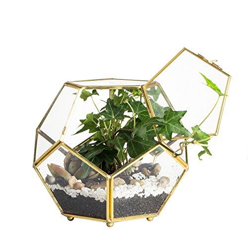 Schließen-Beiner Gold Kupfer Messing Glas Geometrische Terrarium mit Tür Pentagon Ball Form Schließen Farn Moos Sukkulente, Übertopf Display Topf Box 17,5 x 17,5 x 15 cm.