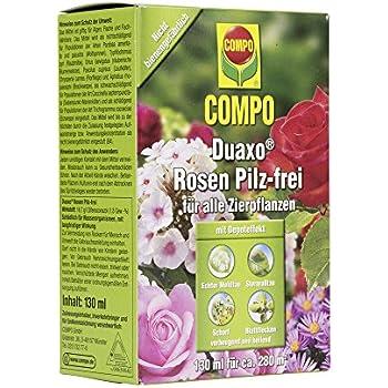 compo duaxo rosen pilz spray bek mpfung von pilzkrankheiten an rosen zierpflanzen und kr utern. Black Bedroom Furniture Sets. Home Design Ideas