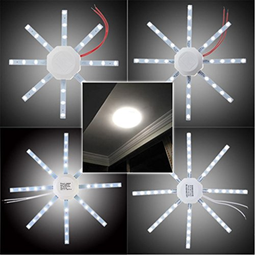 Winkey Base lampe, 12/16/20/24 W au rond 5730SMD LED Dalle de plafond Down Light Ampoule Lampe Blanc 220 V, blanc, 16W