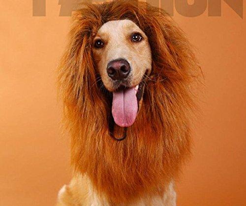 Chien Lion Mane Lion Mane Perruque Lion Mane Costume Lion Mane Perruque Drôle DIY Perruque Perruque De Cheveux Lion Mane Hat Noël Halloween Vêtements Festival Fantaisie Habiller (Brun) , brown , without ears ()