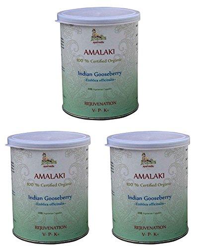 Amalaki Bio (108 Veg Kapseln - 3er pack) - AMLA (Emblica officinalis) 500mg je Kapsel - 100{0eddaead0cf93583e9d60c3d93fef8808836dc75b3acbdcbe5355585495e9a21} Bio-zertifiziertes pflanzliches Nahrungsergänzungsmittel der Lacon GmbH