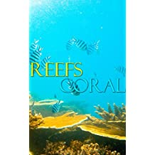 ISLAND REEF PICTURES: PROFESSIONAL UNDERWATER OCEAN REEF IMAGES (COLORFUL REEF PICS FOR CHILDREN Book 10) (English Edition)