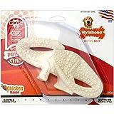 Interpet NDD101PEU Nylabone Kauspielzeug für extreme Kauer, Zahnpflege-Dinosaurierkauknochen - Hühnergeschmack, M