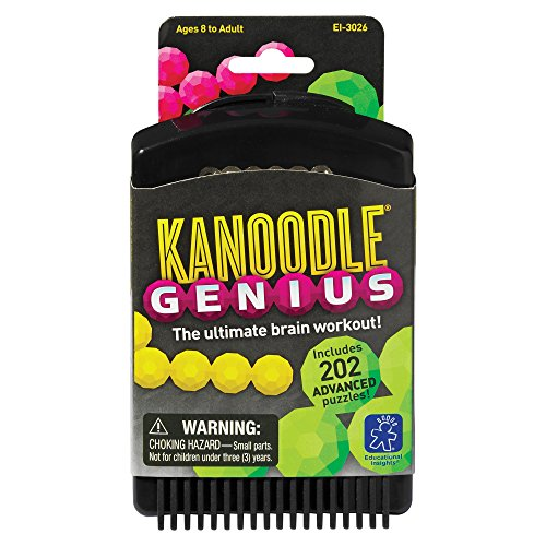 learning-resources-kanoodle-genius-202