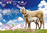 12 Pferde-Einladungen (Set 3) / Geburtstagseinladungen Kinder Mädchen Jungen: 12-Set Einladungskarten zum Kindergeburtstag - Einladungen zum Geburtstag für Mädchen und Jungen von EDITION COLIBRI (10780)