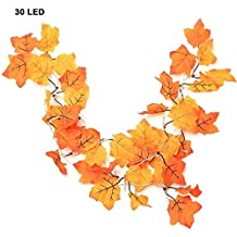 Herbstgirlande Herbstblatter Laub Rot Orange Braun Herbst