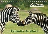 Zebras - Faszination  der Wildnis (Tischkalender 2020 DIN A5 quer): Zebras: Schöne Momentaufnahmen...