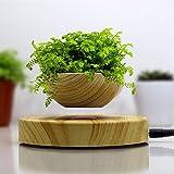 Bulary Magnetic, vaso per pianta in levitazione e base creativa aerea per piante, durevole ed in finto legno (senza pianta)