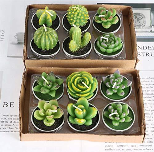 BLUEDRM Vela Perfumada, Conjunto de Velas Artesanales Plant Cactus de 12 Piezas