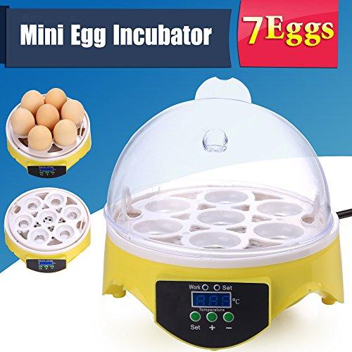 Oliote 7 Eier Mini Inkubator Vollautomatische Brutmaschine Geflügel Brutkasten Brutapparat Flächenbrüter für Hähnchen Ente Gans