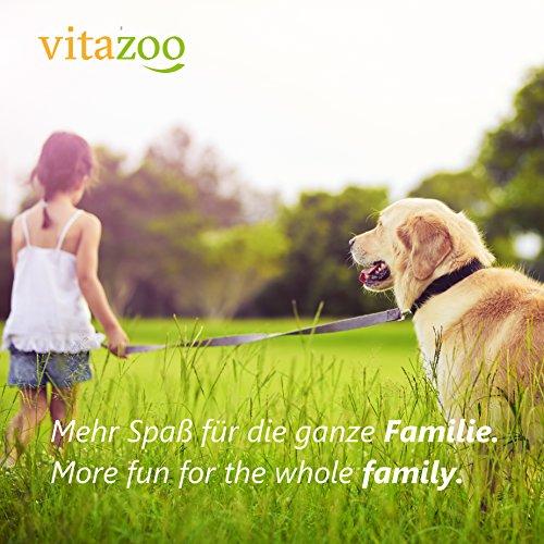 VITAZOO Premium Hundeleine in Graphitschwarz, massiv und verstellbar in 4 Längen (1,4 m – 2,1 m), für große und kräftige Hunde | Hundeführleine, Doppelleine, geflochten mit 2 Jahren Zufriedenheitsgarantie - 6