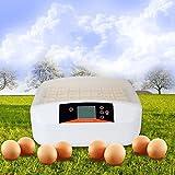 Befied Inkubator Brutmaschine Incubator Flächenbrüter für bis zu 56 Eier...