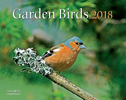 Garden Birds Calendar 2018 - Cameracolour Series