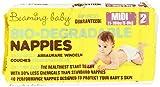 Beaming Baby – Biologisch Abbaubare Windeln –40Stück, Größe 2