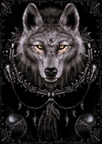 1art1 Gothic - Spiral, Wolf Traumfänger Poster 91 x 61 cm