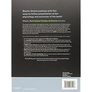 Wheeler's Dental Anatomy, Physiology and Occlusion, 9e