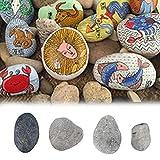 Steine Bemalen Zierkies Garten Kies Splitt Farbe Wählbar 500g / Acrylfarbe