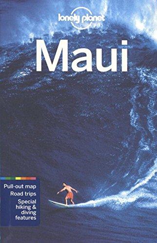 Descargar Libro Maui de AA. VV.