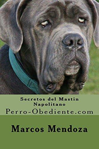 Secretos del Mastin Napolitano: Perro-Obediente.com por Marcos Mendoza