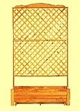 PROMEX Pflanzkasten Rankkasten Romantica 120 x 200 cm