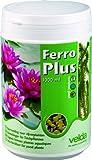 Velda 122450 Eisendünger für Teichpflanzen, Für 6000 l Teichwasser, Ferro Plus, 1000 ml