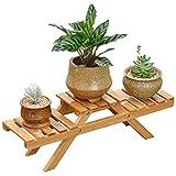 Edge to Blumenregale Bambus Pflanzenständer 2-Tier Blumen Display Regal Rack Organizer Leiter für Home Terrasse Rasen Garten Balkon