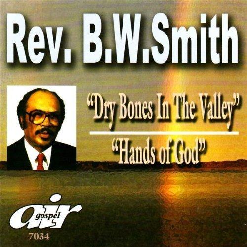Dry Bone in the Valley: Hands of God by Rev. B.W. Smith (2013-05-04) (W B Smith)