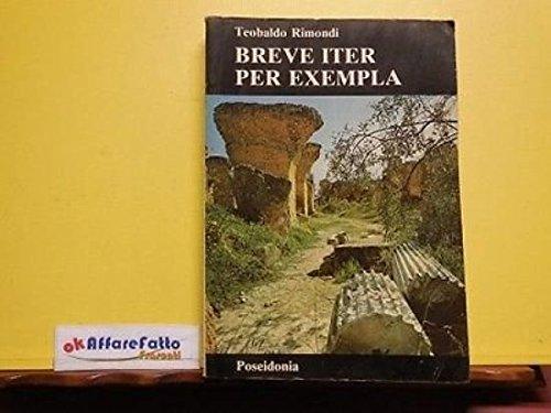 ART 8.925 LIBRO BREVE ITER PER EXEMPLA DI TEOBALDO RIMONDI 1990