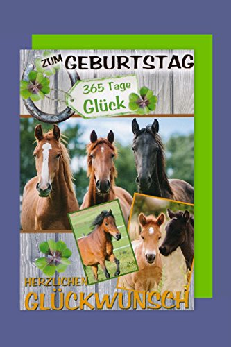 Pferde Geburtstag Karte Grußkarte Reiten Fohlen Foliendruck 16x11cm -