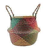 Sguan-wu, cesto pieghevole in paglia di vimini con manico, da giardino, fioriera e lavanderia, Green Red, s