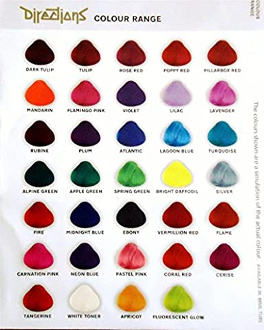 6 x LaRiche Directions 88 ml alle Farben
