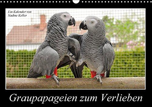 Graupapageien zum Verlieben (Wandkalender 2017 DIN A3 quer): Lebendige Fotos von wunderschönen Graupapageien (Monatskalender, 14 Seiten) (CALVENDO Tiere)