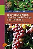 ISBN 3800175924