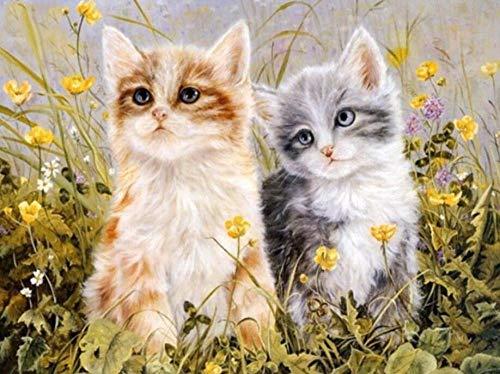 DAFFG DIY Digitale Malerei Kit Wildflower Kätzchen Weihnachten Geschenk Vorgedruckt Leinwand-Ölgemälde Geschenk Für Erwachsene Kinder - 40X50 cm -