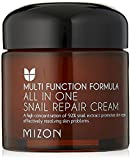 MIZON ALL IN ONE SNAIL REPAIR CREAM 75ml - 92% Schneckenextrakt - Anti-Aging & Antifaltenpflege - Hautregeneration - Koreanische Kosmetik