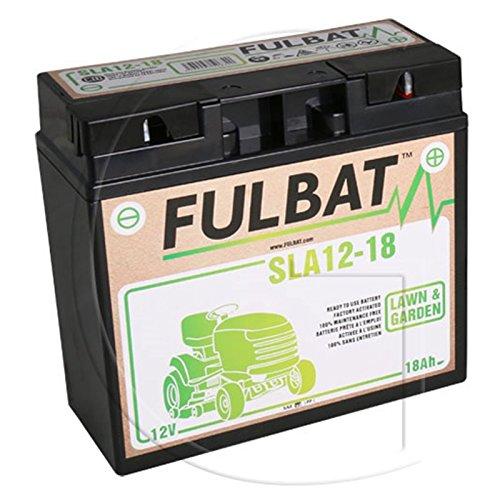 Batterie tracteur tondeuse 12V 18AH