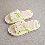BAOZIV587 - Zapatillas de verano para el aire libre, diseño de rana floral