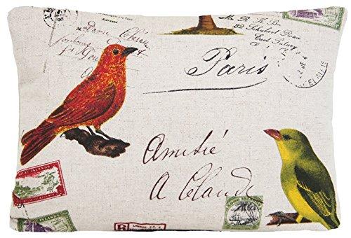 Vintage Look Vogel Kissenbezug, Post Karte Birds Kissen Überwurf Schutzhülle Palm Tree (Palm Nackenrolle Kissen)