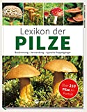 Lexikon der Pilze: Bestimmung, Verwendung, typische Doppelgänger - Hans W. Kothe