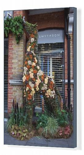 canvas-print-of-smythsons-floral-giraffe-2017